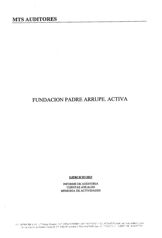 Informe-de-auditoria-2013-1